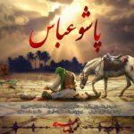 دانلود آهنگ جدید محمدرضا عشریه به نام پاشو عباس